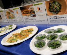 通販で「おいしさが見える」キャンペーン~冷凍野菜を産地・品質データ付き&レシピ連動で販売