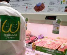 肉なのに青魚効果~オメガバランスミート。これは惹かれます。ニチレイフレッシュから