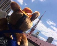 どさんこ君来たる。「なまらでっかい東京タワー」