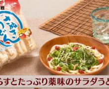 JT杯第1戦 「将棋メシ」は、しらすとたっぷり薬味のサラダうどん!
