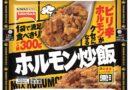 これはハマるとクセになる、辛くて噛むほどに旨みがじんわり「ホルモン炒飯」300g